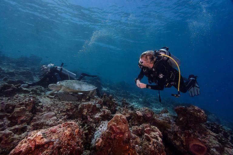 Dive Trip to Maratua With ODYdive