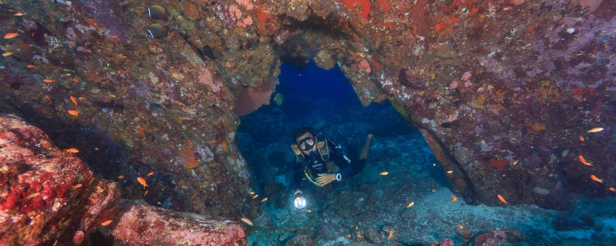 Dive Trip to Pulau Weh With ODYdive