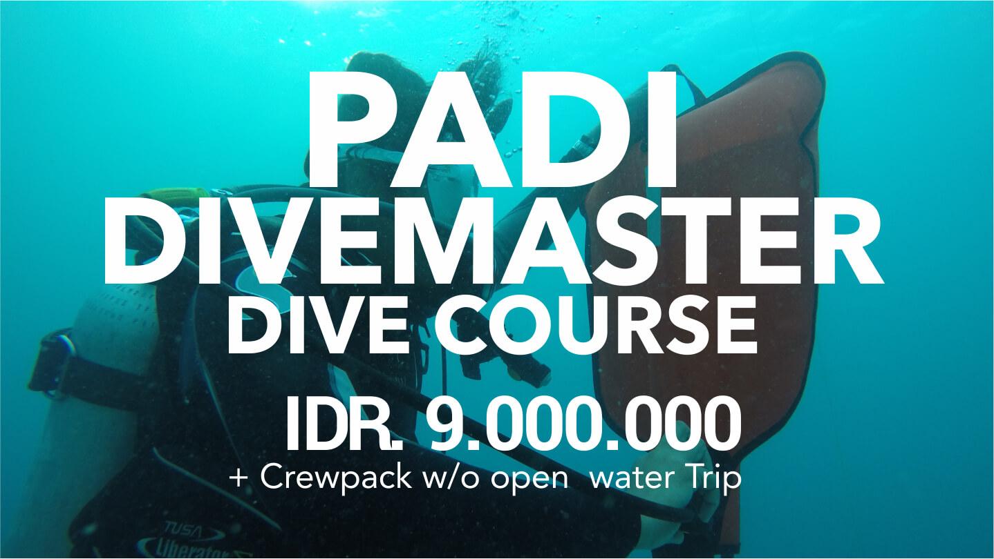 Ody Dive PADI Dive Course Dive Master