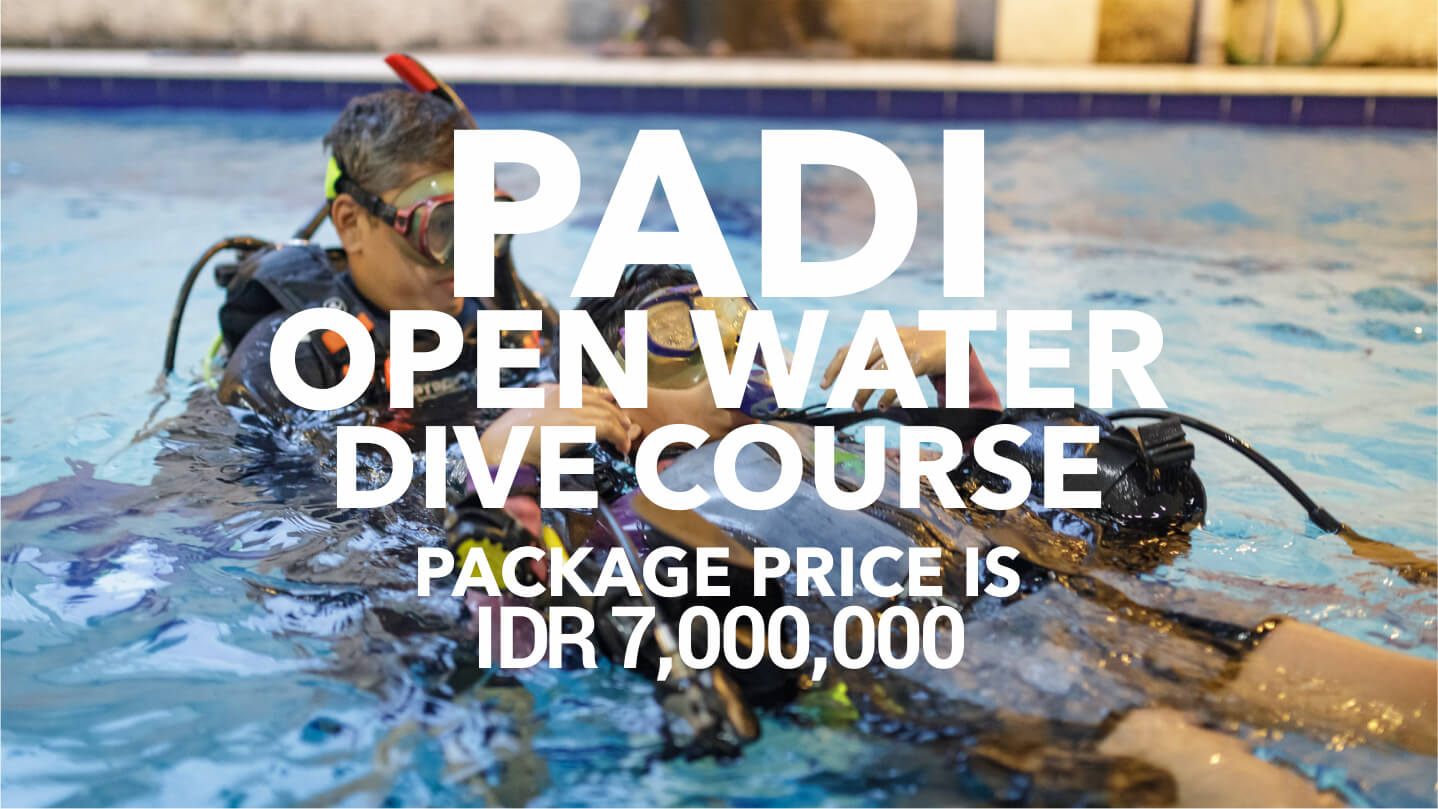 ODY Dive PADI Dive Course Open Water