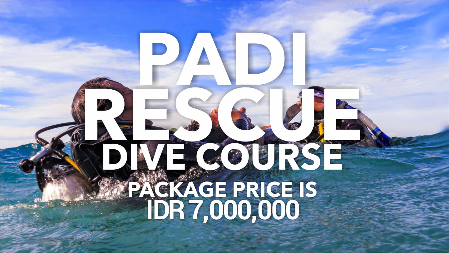 Ody Dive PADI Dive Course Rescue